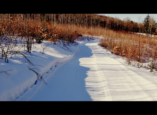 groomed trails at black cat mountain