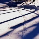 black cat mountain ski trails