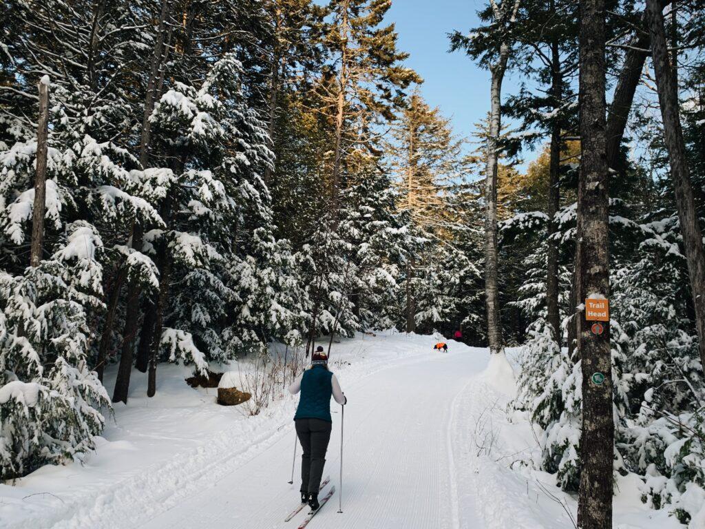 Baileigh Skiing