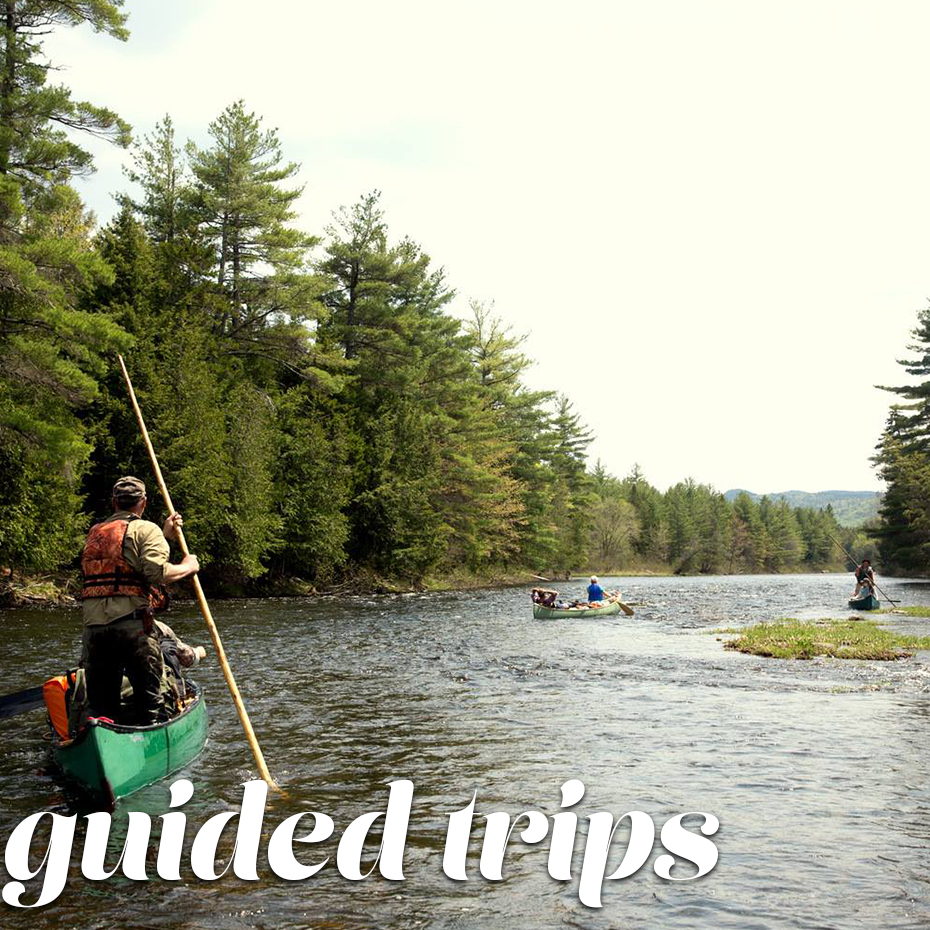 GuidedTrips