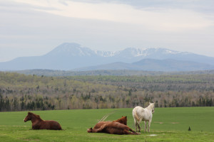 Views of Katahdin from the Scenic Byway