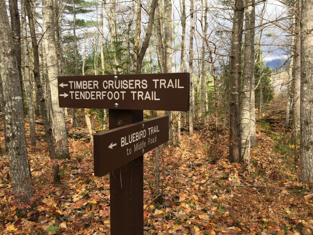 Trails at River Pond