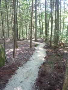 KAT - Single Track Trails