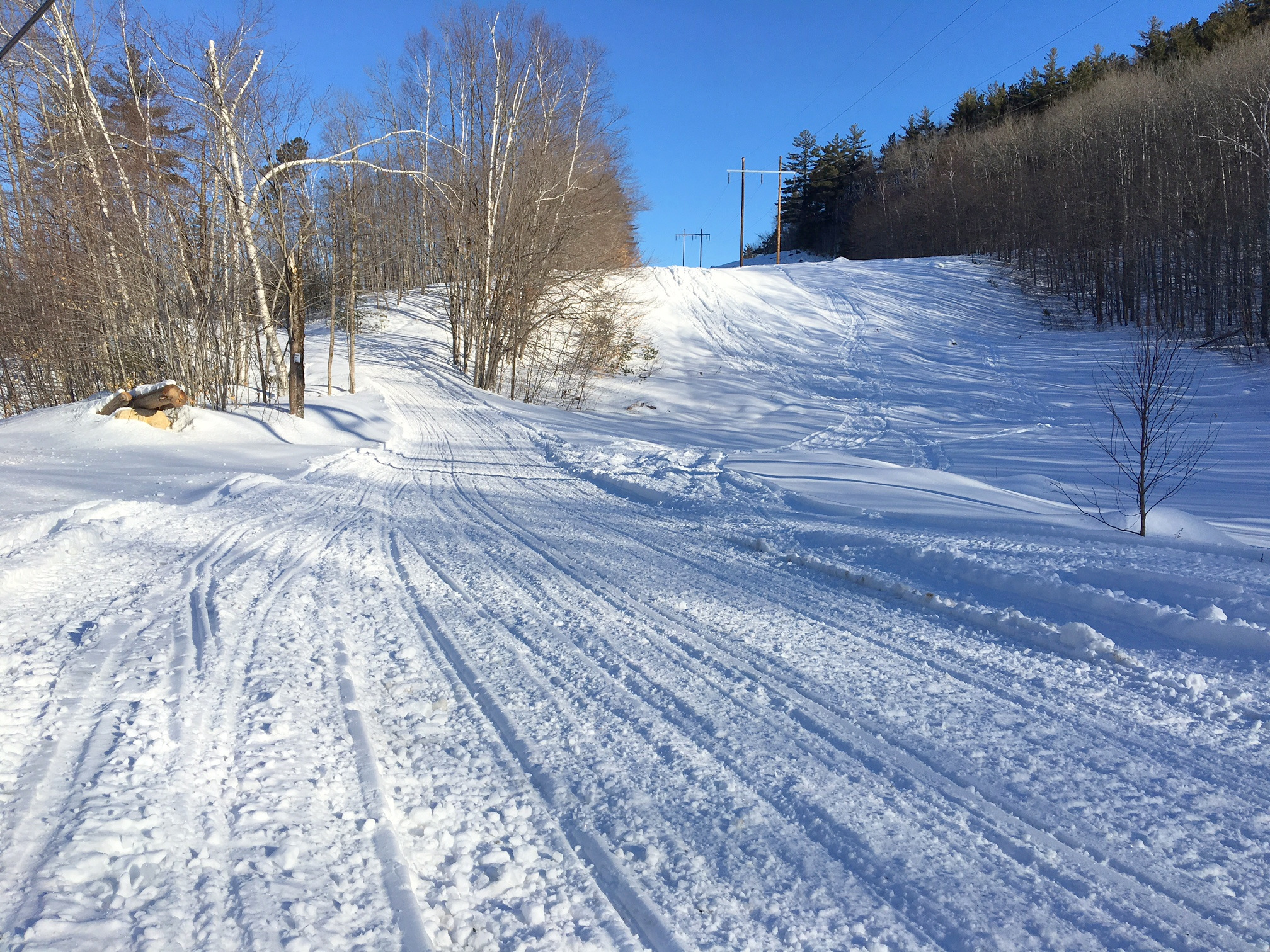 Neoc trails march 21
