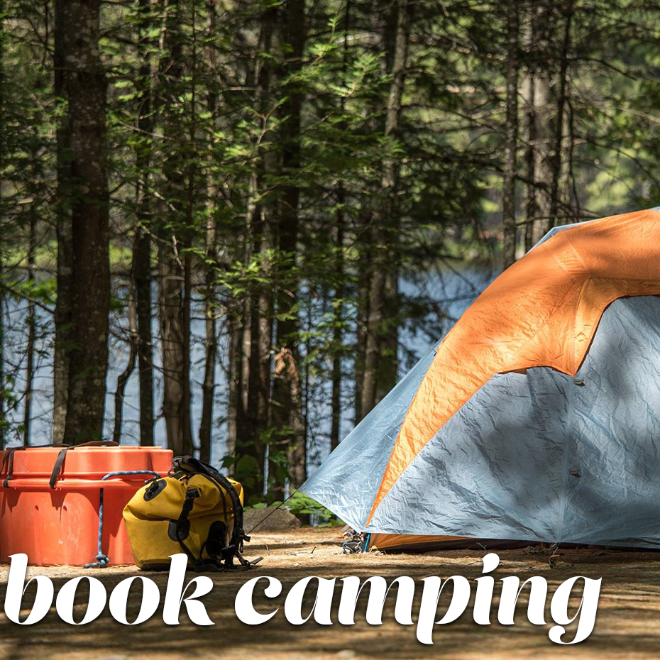 bookcamping