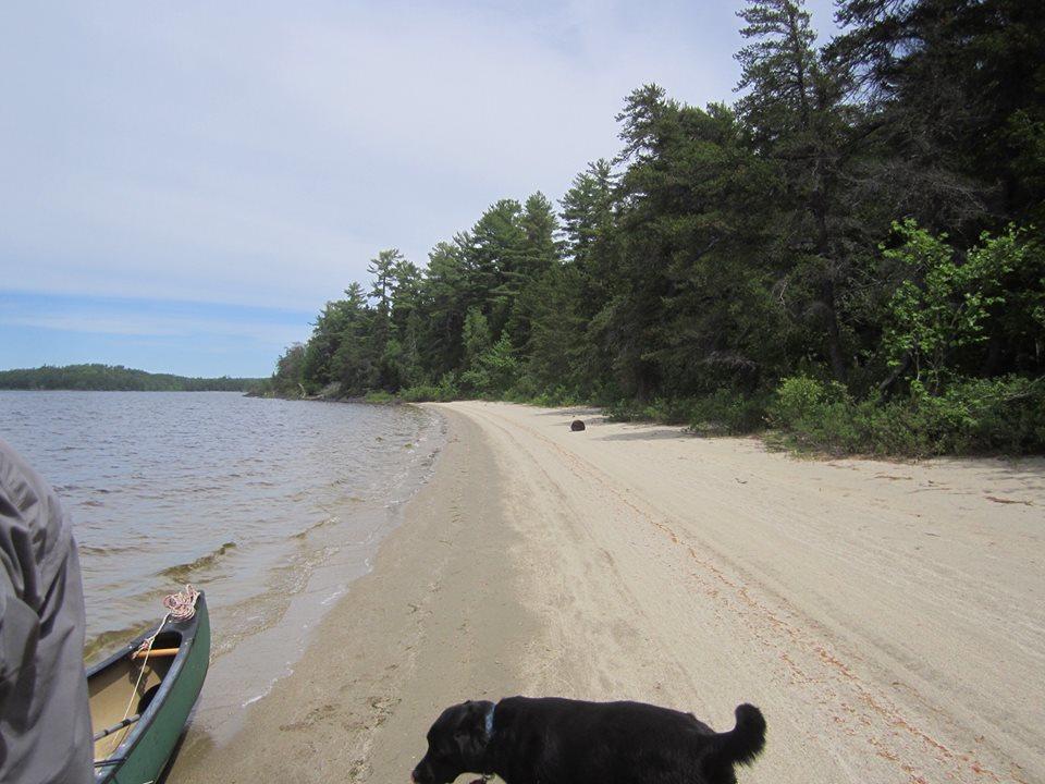 lob beach